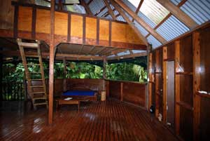 accommodation in the daintree rainforest