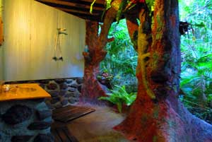 daintree accommodation with outdoor shower