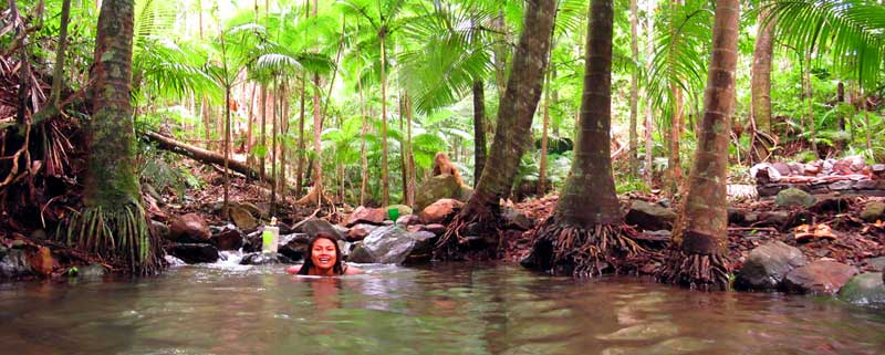 swim next to your daintree accommodation